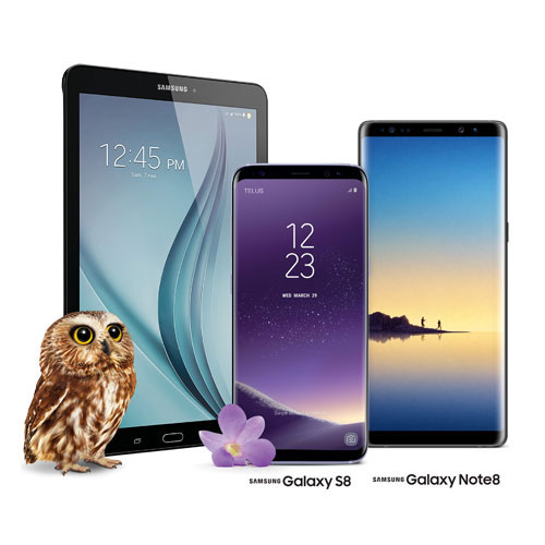 Image of the Samsung Galaxy Tab E and the Samsung Galaxy S8