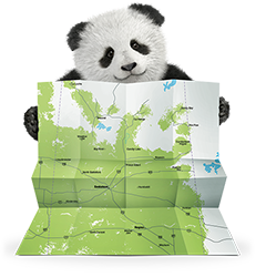 Image: Panda with a map