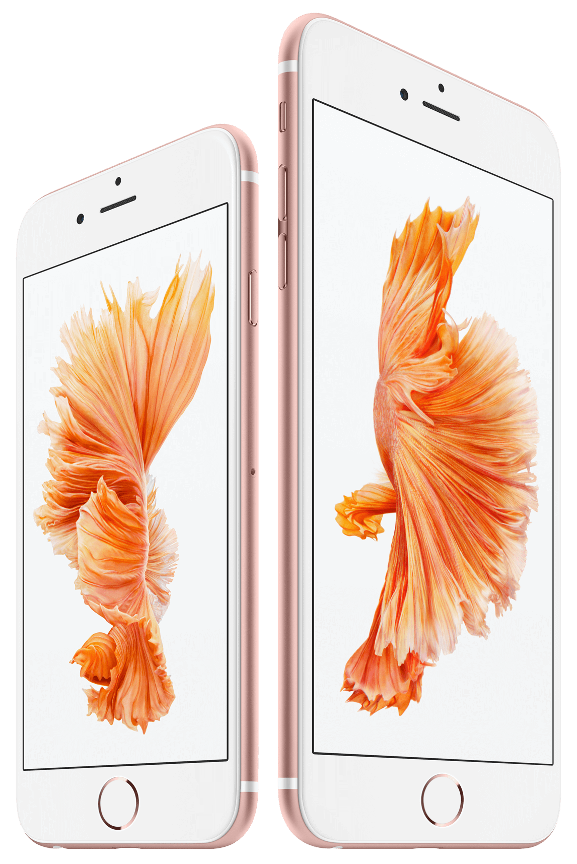 iPhone 6s Plus | Mobility | TELUS.com