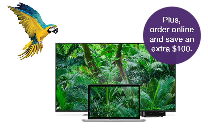 Parrot and TV - Plus order online and save an extra $100