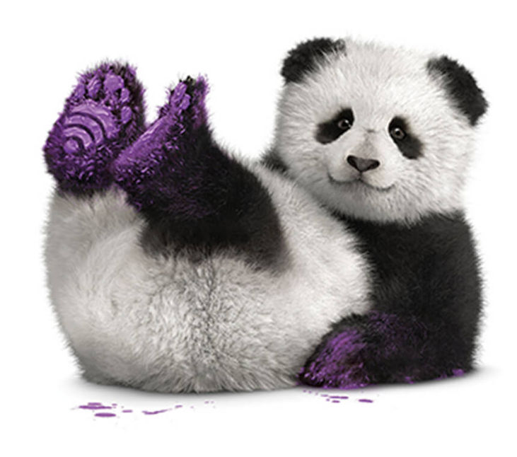 Panda on back with painted purple paws in the air