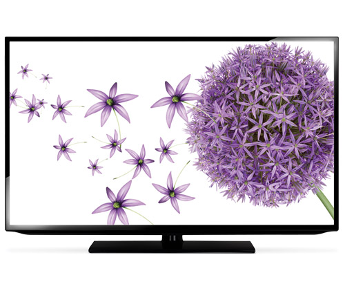 Telus TV with flowers on screen